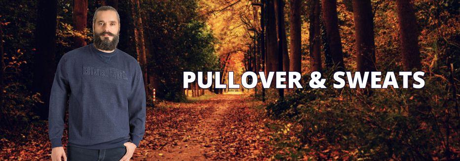 Übergrößen Pullover